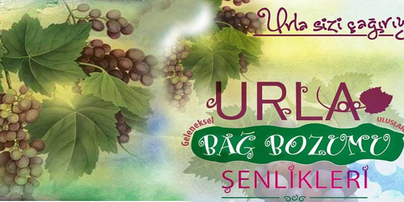 urla-geleneksel-bag-bozumu-senligi-634
