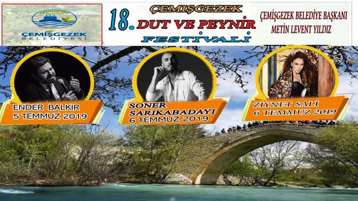 cemisgezek-dut-ve-peynir-festivali-1167
