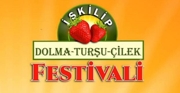 iskilip-dolma-tursu-ve-cilek-festivali-1438