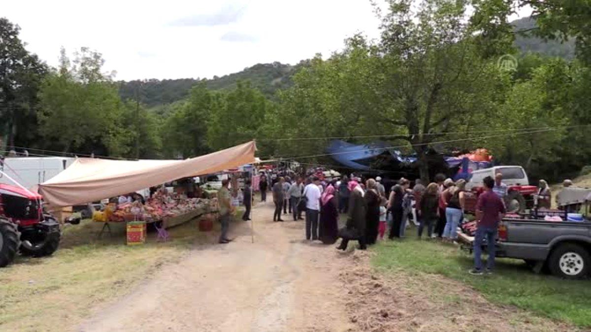 geleneksel-sermayecik-koyu-cilek-festivali-1340