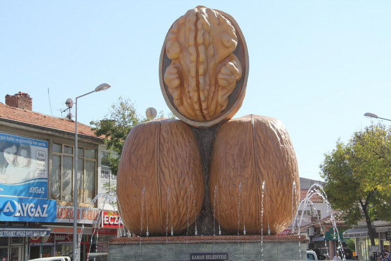 kaman-kultur-sanat-ve-ceviz-festivali-307