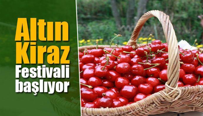 korfez-belediyesi-altin-kiraz-festivali-362