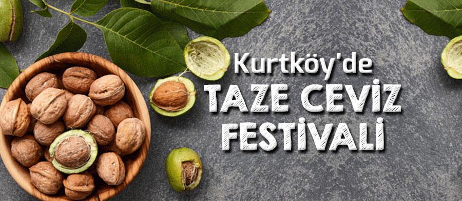 sapanca-kurtkoy-taze-ceviz-festivali-1323