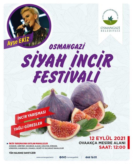 osmangazi-siyah-incir-festivali-437