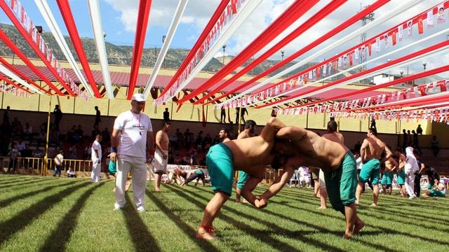 uluslararasi-salvar-gures-festivali-1556