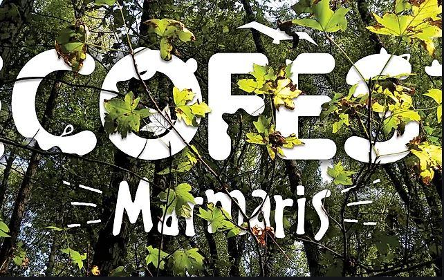 ecofest-marmaris-1523