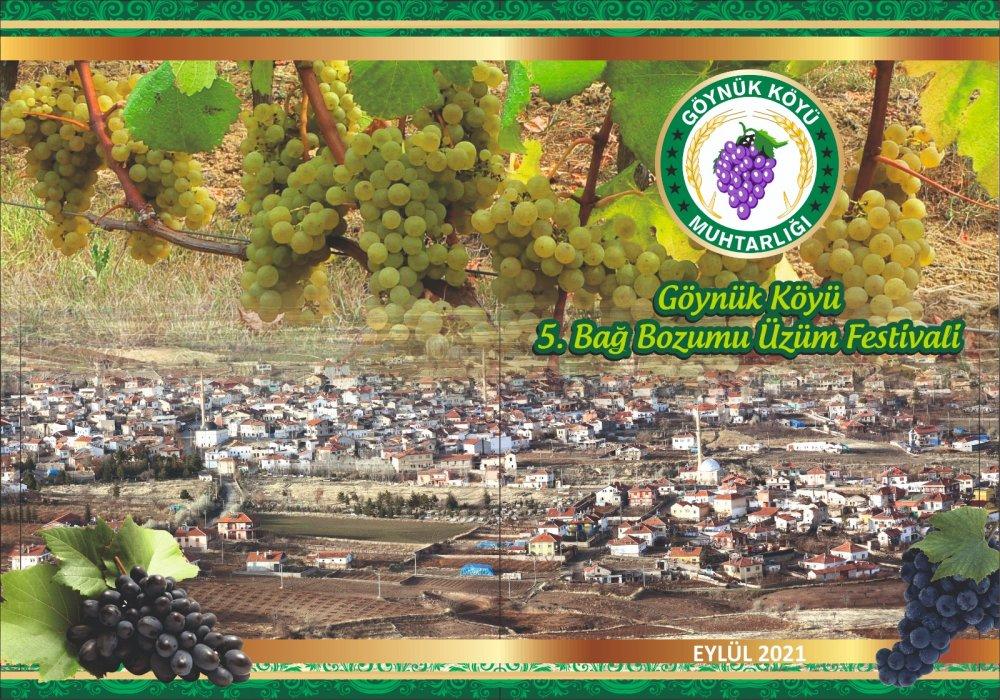 goynuk-bag-bozumu-ve-uzum-festivali-2064