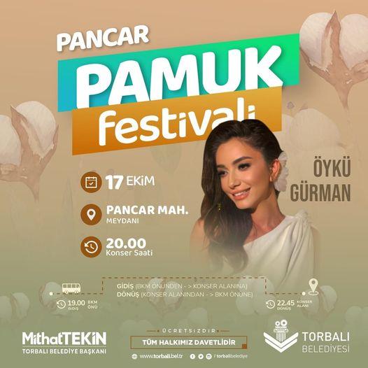 pamuk-festivali-2084